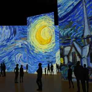 Imagine Van Gogh au Carré des Docks © DR